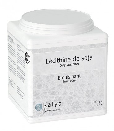 Lécithine de soja - Pot 500 g