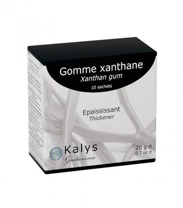 Xanthane - Sachet 10 x 2 g