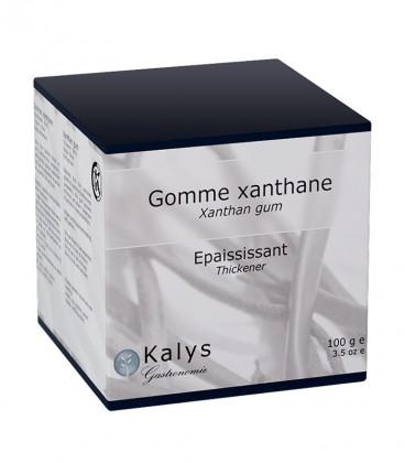 Xanthane - Pot 100 g