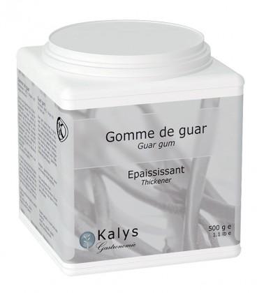 Gomme de Guar - Pot 500 g