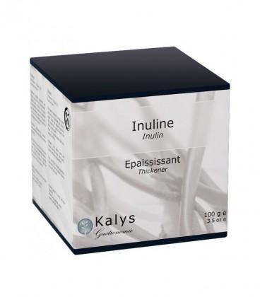 Inuline - Pot 100 g