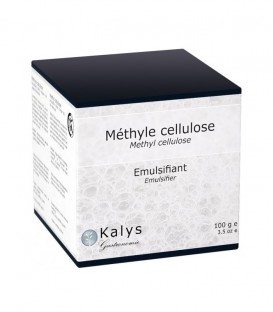Méthyle Cellulose - Pot 100 g